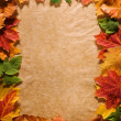Autumn background — Stock Photo #9549983