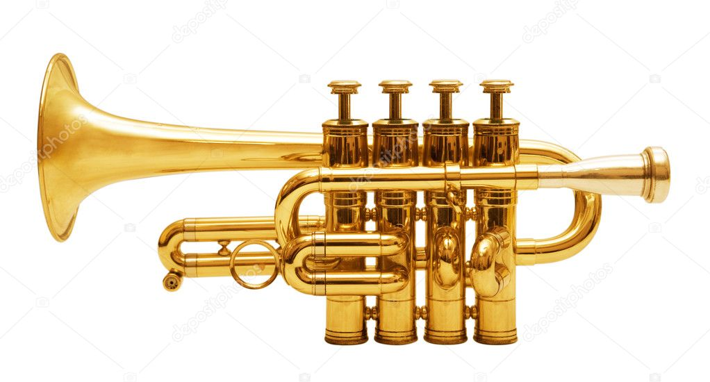 Wind musical instrument isolated over white background — Stock Photo #9549448