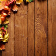 Autumn background — Stock Photo #9550043