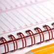 Stock Photo: Day planner
