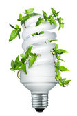 Energy saving lightbulb — Foto Stock
