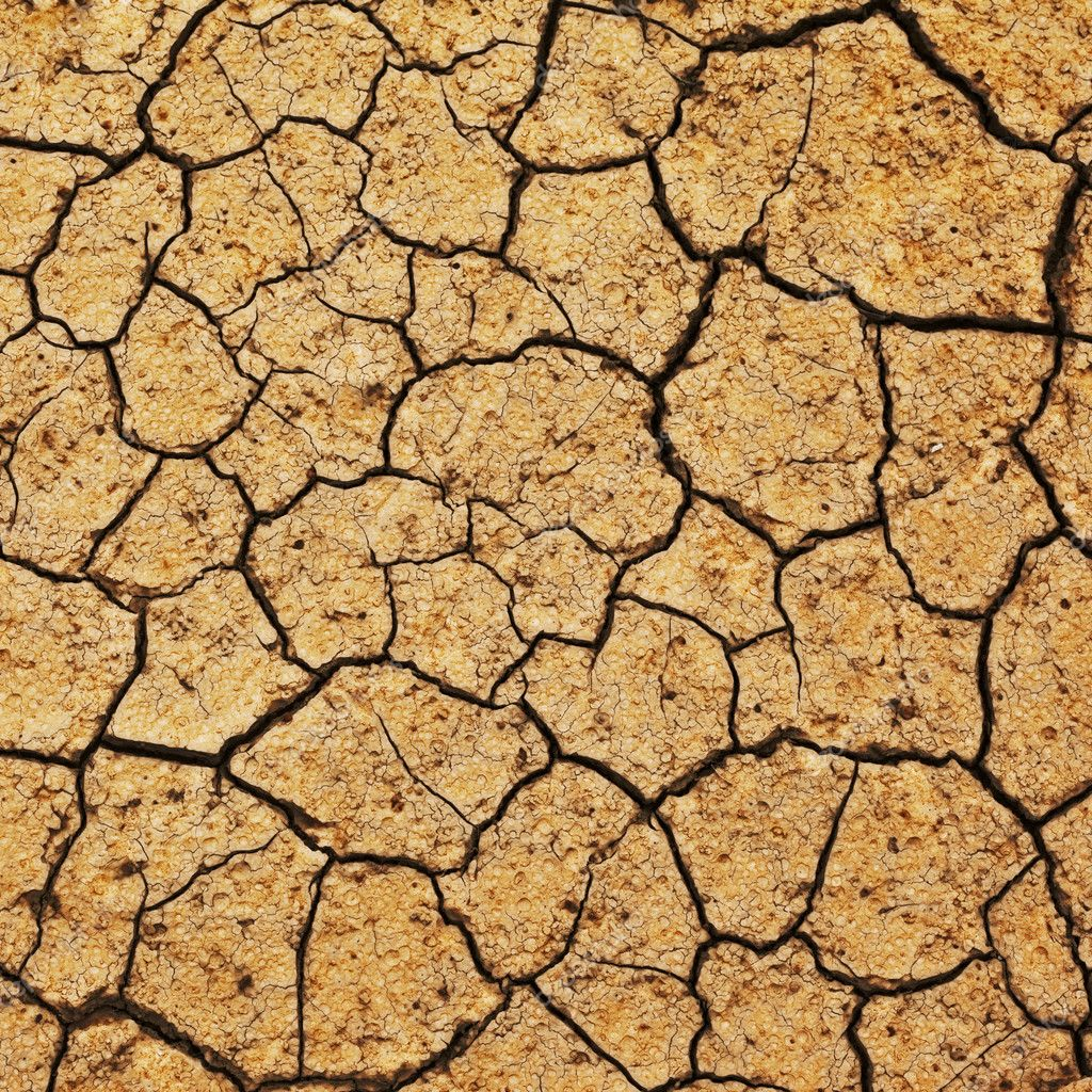 Field of baked earth after a long drought.  Stock Photo #9595401