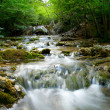 Natural Spring Waterfall — Stock Photo #9602368