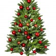 Christmas Tree isolated — Stock Photo