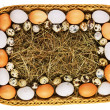Fresh eggs in straw basket isolated — Stock Photo
