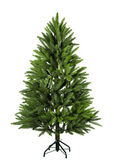The Bare Christmas tree — Stock Photo