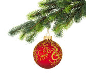 Christmas tree branch with Christmas ball — Stock Photo