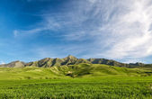 Landcscape hight mountains. Landscape in the fields. — Stock Photo