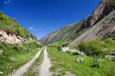 Bergslandskap. issik-ata gorge, kirgizistan — Stockfoto