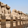 Architecture of Egypt - Stock Photo