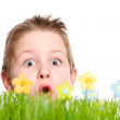 Spring portrait of surprised boy — Stock Photo