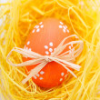 Easter egg in nest - Stock Photo