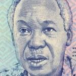 Постер, плакат: Julius Nyerere