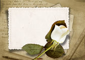 Vintage background with faded rose and old card — Stock Photo