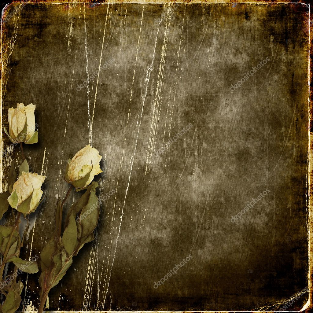 Grunge scratches background with roses for vintage album — Stock Photo #9153309