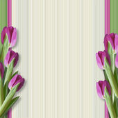 Greeting background with tulips — Stock Photo