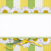 Beautiful card with daisy — Stock Photo