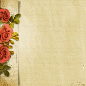 Old roses on vintage background — Stock Photo