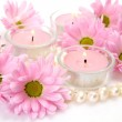 Pink flowers and pearls — Stock Photo
