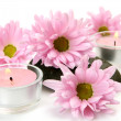 Flowers and candles — Stock Photo #10046103