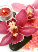 Pink orchids and candle — Stock Photo