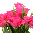 Bouquet of pink roses — Stock Photo #10419235