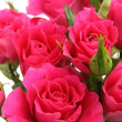Bouquet of pink roses — Stock Photo #10419269