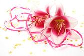 Blommor och konfetti — Stockfoto