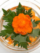 Floating flower — Stock Photo