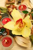 黄色の蘭とキャンドル — ストック写真