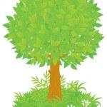 Постер, плакат: Foliage tree