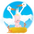 Stock Photo: Storks and Baby