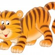 Tiger cub — Stock Photo