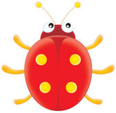 Red ladybird — Foto Stock