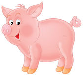 Pink piglet — Stock Photo