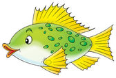 Spotted Fish — Stock Photo