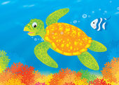 Turtle and fish swim over a coral reef — Stock Photo