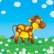 Stock Photo: Brown cow in the field