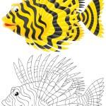 Постер, плакат: Scorpion fish