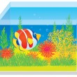 Stock Photo: Aquarium with a tropical fish