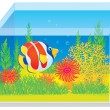 Aquarium with a tropical fish - Stock Photo