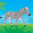 Zebra goes in savanna — Stock Photo