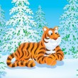 Tiger in taiga - Stock Photo