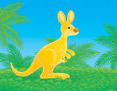 Yellow kangaroo — Stock Photo