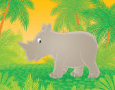 Walking Rhinoceros — Stock Photo