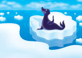 Seal on a floe — Stock Photo
