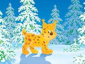 Lince en un bosque de invierno — Foto de Stock