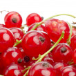Currants — Stock Photo #10606342