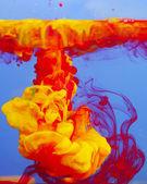 Color water splash — Stock Photo
