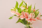 Bouquet of alstroemeria — Stock Photo